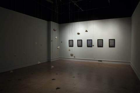 Installation view at Wichita State University